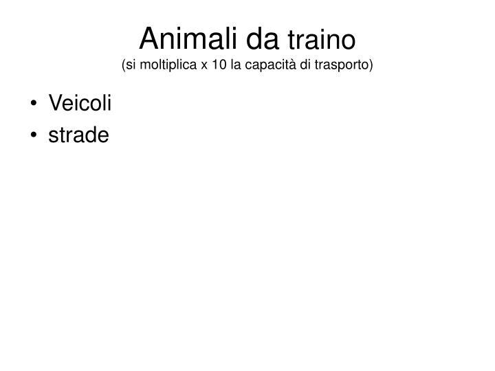 Animali da