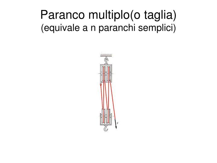 Paranco multiplo(o taglia)