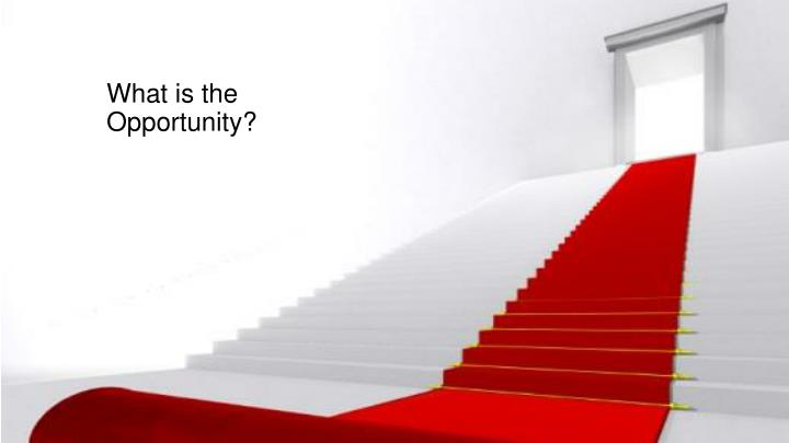 What is the Opportunity?