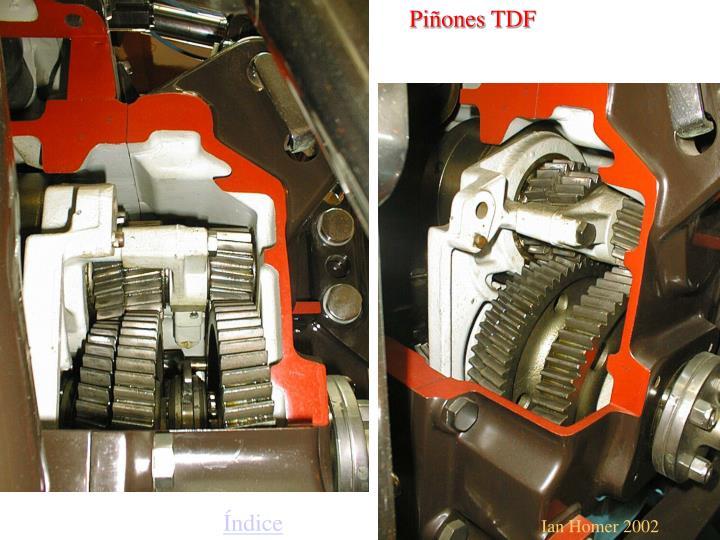 Piñones TDF
