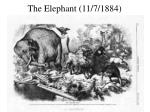 the elephant 11 7 1884