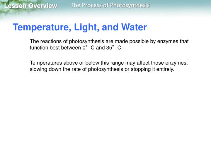 Temperature, Light, and Water