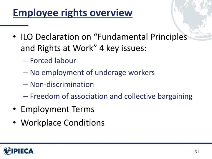 Employee rights overview
