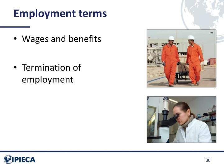 Employment terms