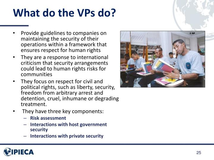 What do the VPs do?