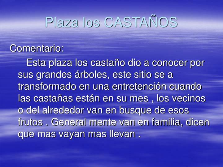 Plaza los CASTAÑOS