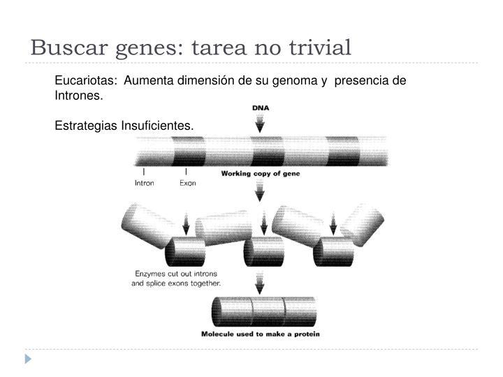 Buscar genes: tarea no trivial