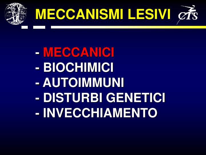 MECCANISMI LESIVI