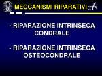riparazione intrinseca condrale riparazione intrinseca osteocondrale