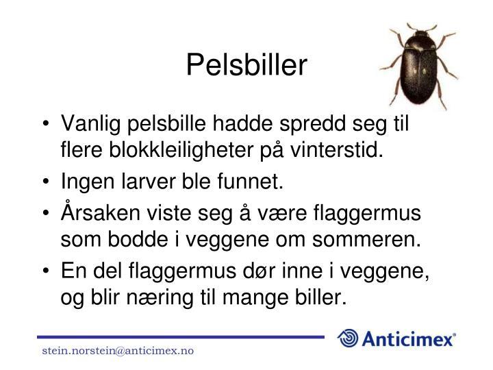 Pelsbiller