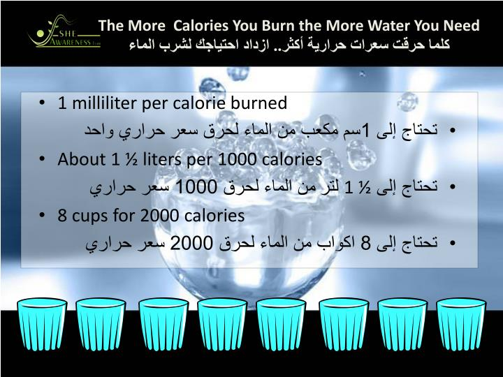 The More  Calories You Burn the More Water You Need