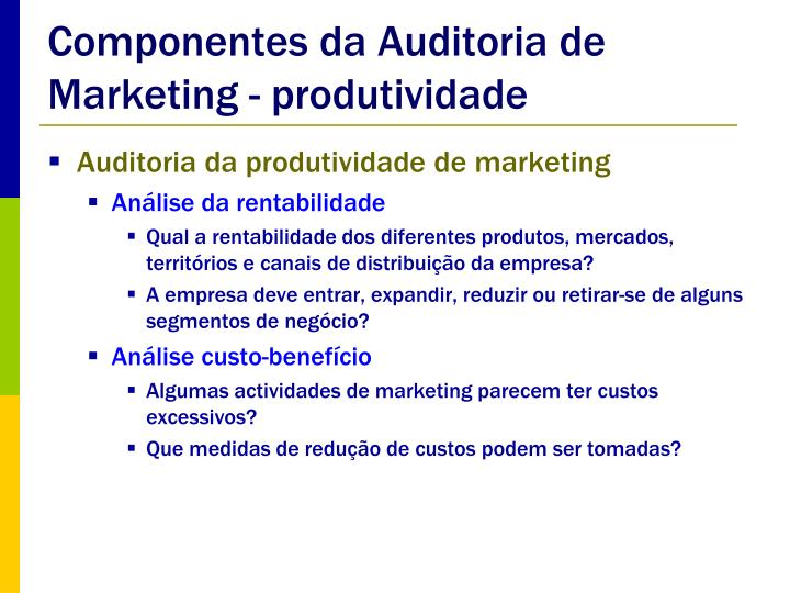 Componentes da Auditoria de Marketing - produtividade