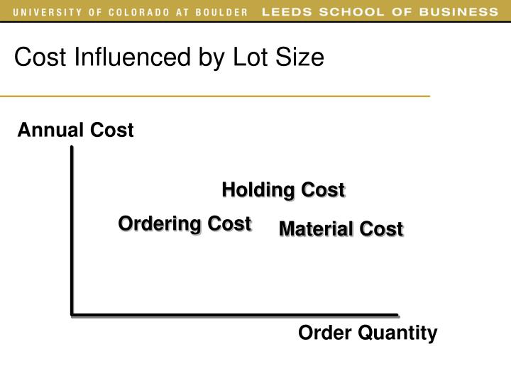 Cost Influenced by Lot Size