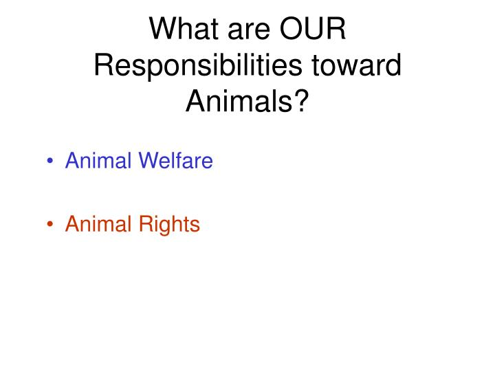 What are OUR Responsibilities toward Animals?