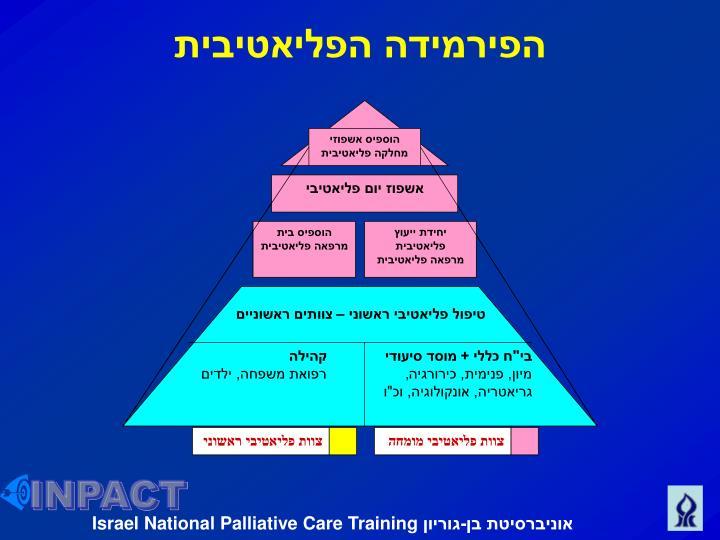 הפירמידה הפליאטיבית