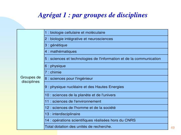 Agrégat 1 : par groupes de disciplines