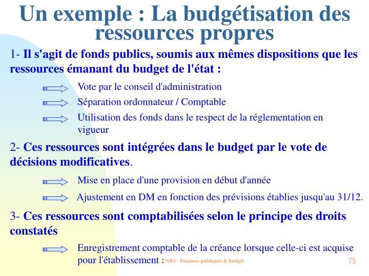 Un exemple : La budgétisation des ressources propres