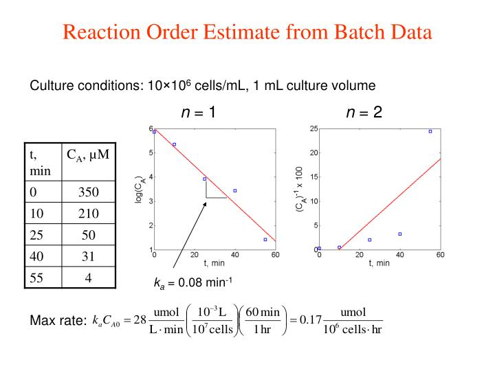 Reaction Order Estimate from Batch Data