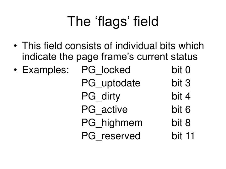 The 'flags' field