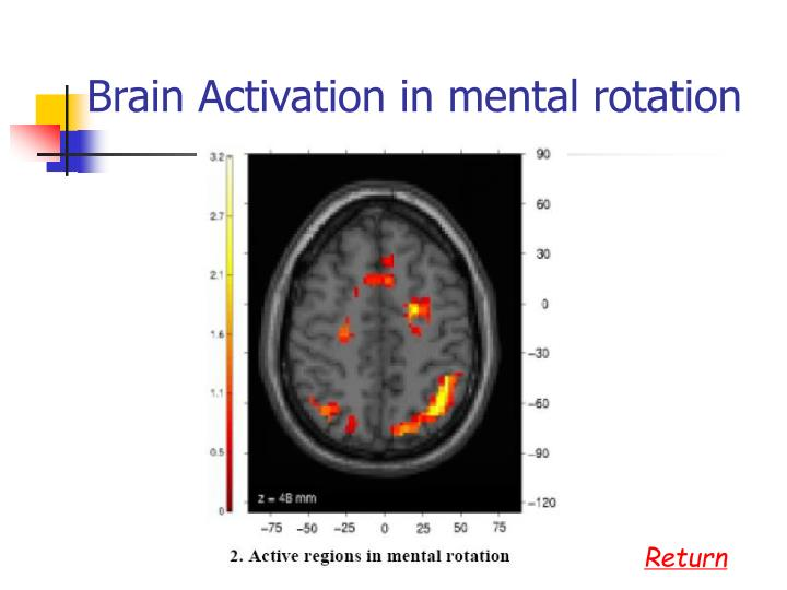 Brain Activation in mental rotation