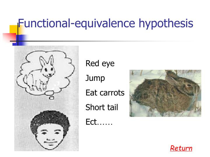 Functional-equivalence hypothesis