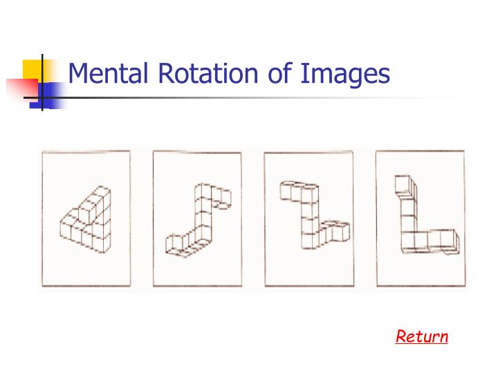 Mental Rotation of Images