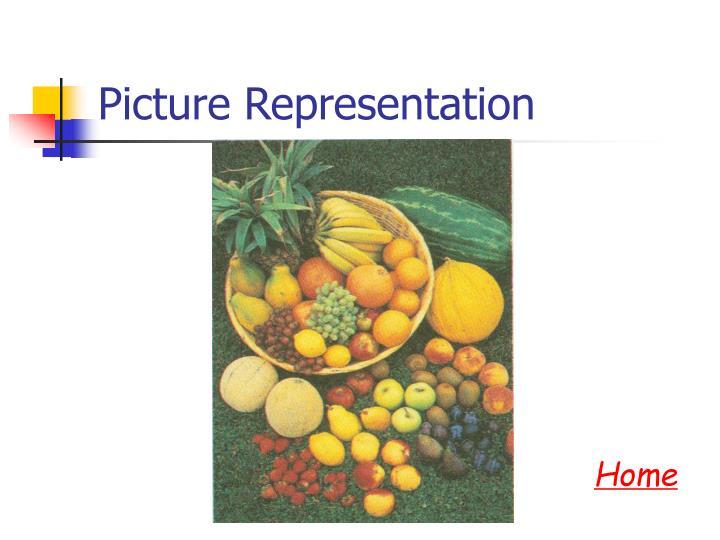 Picture Representation