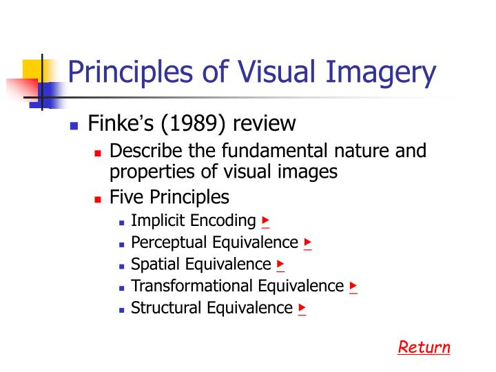 Principles of Visual Imagery