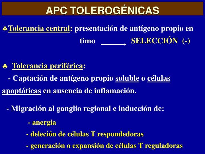 APC TOLEROGÉNICAS