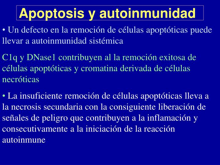 Apoptosis y autoinmunidad