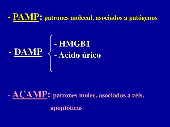 - HMGB1