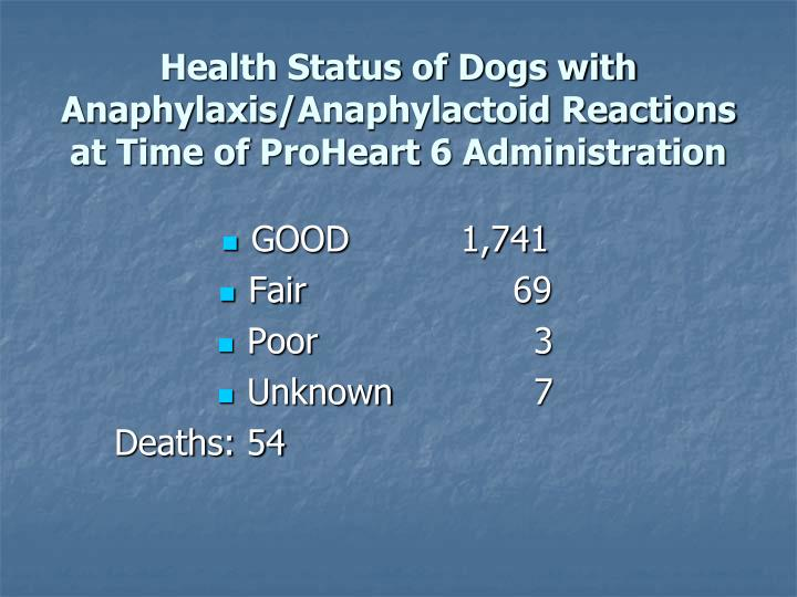 Health Status of Dogs with Anaphylaxis/