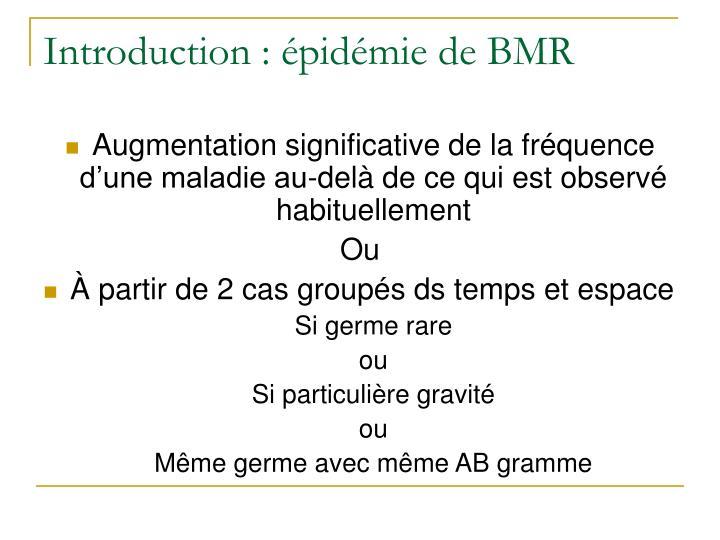 Introduction pid mie de bmr