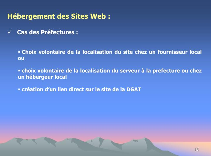 Hébergement des Sites Web :