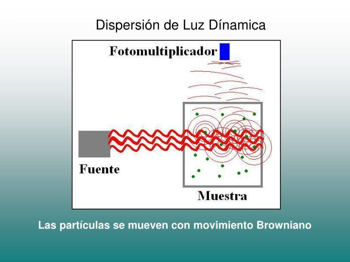Dispersión de Luz Dínamica