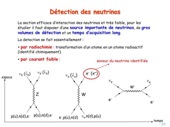 La section efficace d'interaction des neutrinos et tr