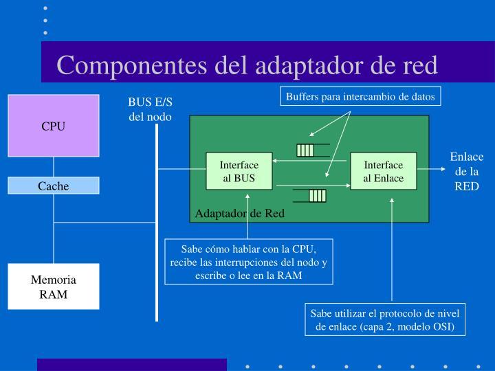Componentes del adaptador de red