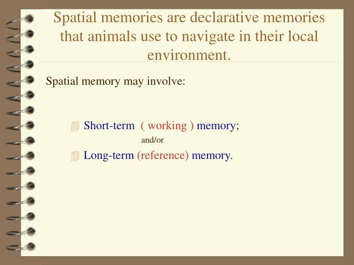 Spatial memories are declarative memories that animals use to navigate in their local environment.