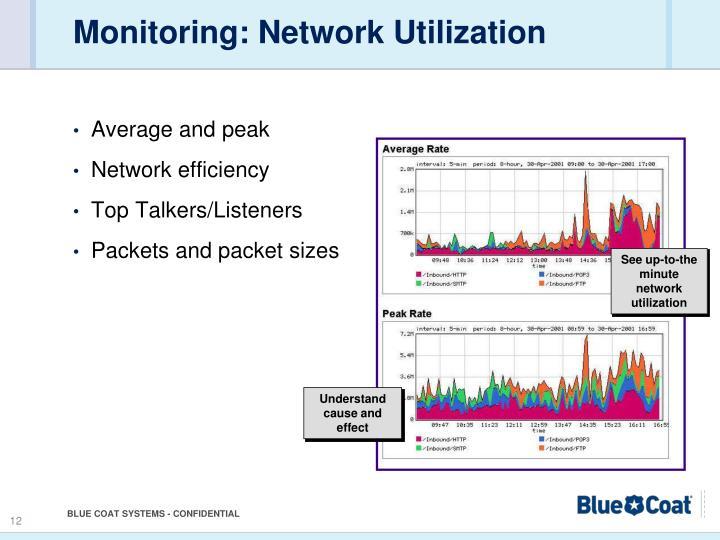 Monitoring: Network Utilization