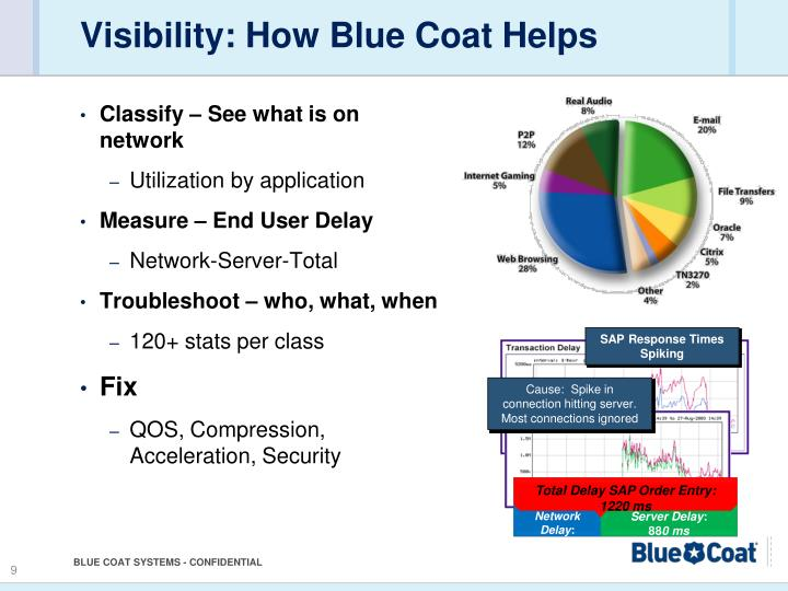 Visibility: How Blue Coat Helps