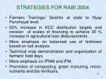 strategies for rabi 2004