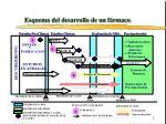 esquema del desarrollo de un f rmaco