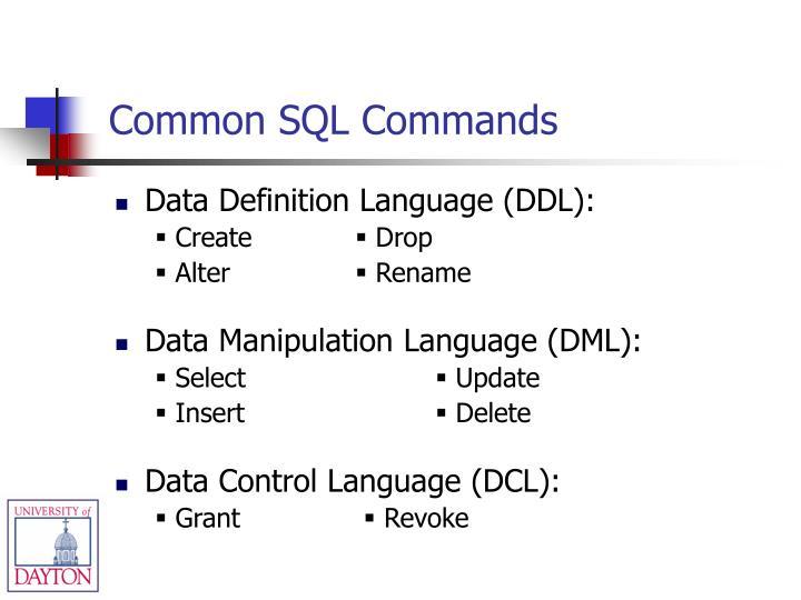 Common SQL Commands