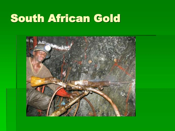 South African Gold