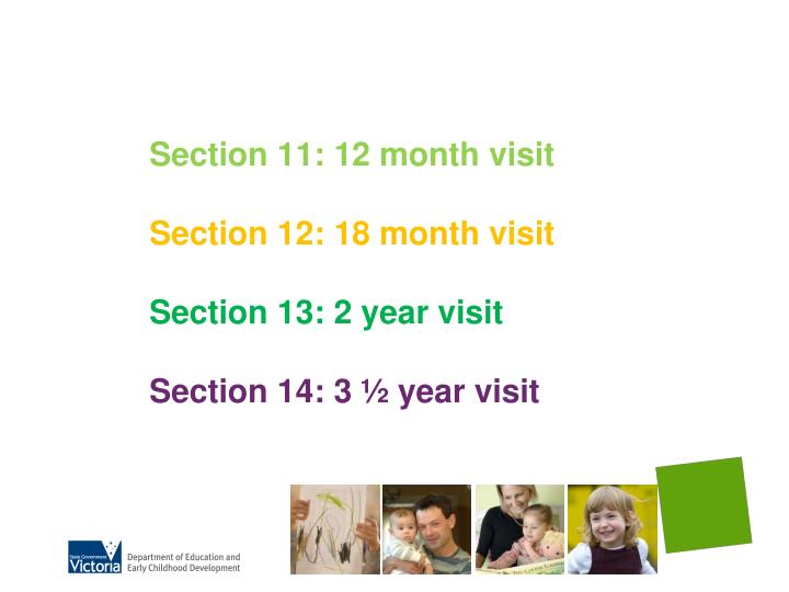 Section 11: 12 month visit