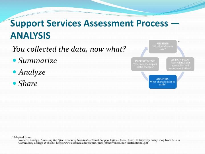 Support Services Assessment Process — ANALYSIS