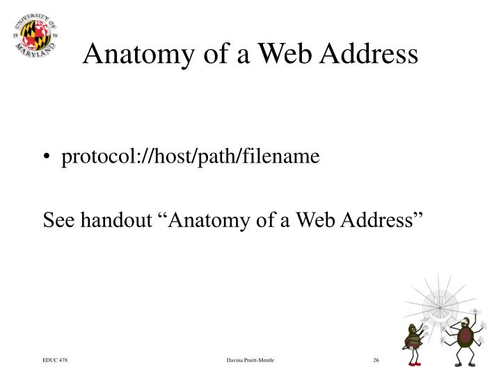 Anatomy of a Web Address