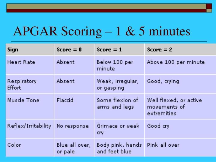 APGAR Scoring – 1 & 5 minutes