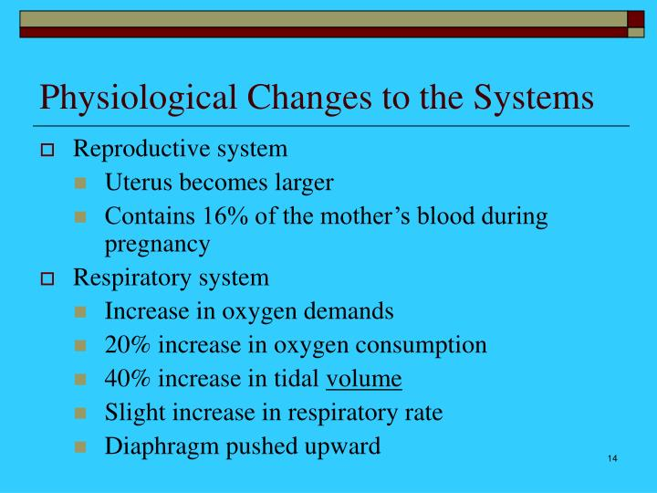 Physiological Changes to the Systems