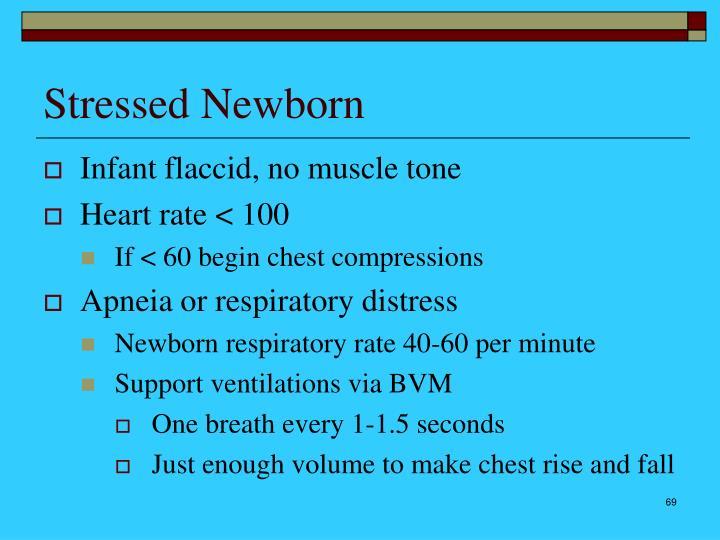 Stressed Newborn
